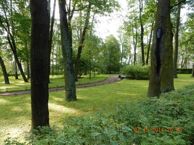 Park at the Summer Palace