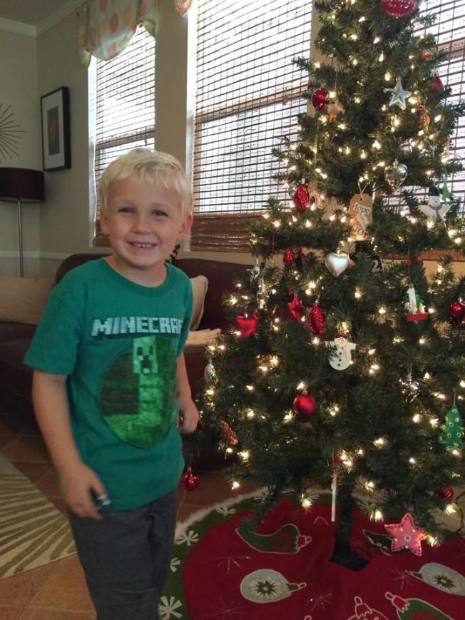 Nolan's Tree