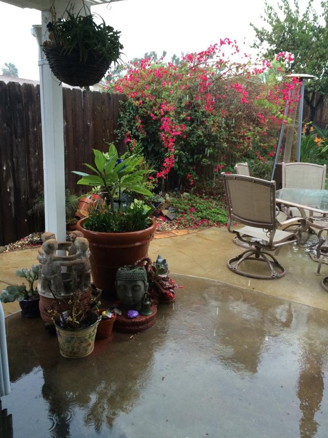 The rain has started  12/14