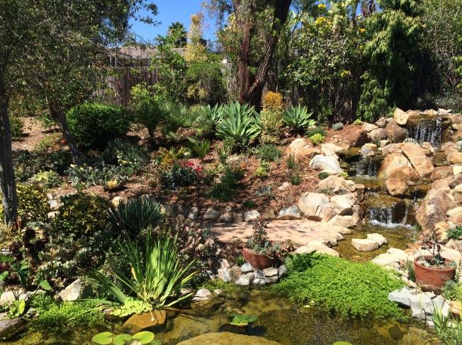 Barbaras beautiful your & waterfall.